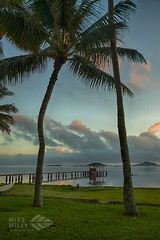 Kaneohe Pier Sunrise (wileyimages.com) Tags: pier sunrise oahu hawaii hawaiianislands kaneohe palmtrees