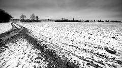 Winter 2018 Reloaded (++sepp++) Tags: landscape landschaft landschaftsfotografie schnee winter snow bayern bavaria graben deutschland germany field feld bäume trees bewölkt wolken clouds clouded