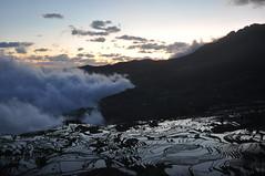 DSC_0595 (tcchang0825) Tags: terrace hani yunnan yuanyang sunrise