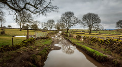 Off road vehicles only! (Ian Emerson (Thanks for all the comments and faves) Tags: impassable derbyshire trees lane road flooded water snow landscape wall gates farmland outdoor peakdistrict 1855mm canon photography hiking muddy