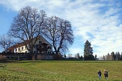 2017-12-31 Schlehdorf, Kochelsee, Kreut-Alm 020 (Allie_Caulfield) Tags: foto photo image picture bild flickr high resolution hires jpg jpeg geotagged geo stockphoto cc sony rx100 2 ii 2017 silvester winter alpen alps bavaria oberbayern schlehdorf kochelsee see lake oberland voralpen viewpoint hike wanderung blue sky
