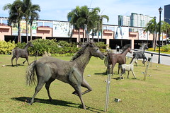 YES TO HORSES (PINOY PHOTOGRAPHER) Tags: muntinlupa metro luzon angle view horse family sculpture display park picturesque smorgasbord trek lines curves scene portrait angles frame image wonderful picture photography art flickr philippines trip tour travel asia world color pov framing amazing popular interesting canon choice camera work top famous significant important item special topbill light creation awesome visual viajar litrato larawan line curve like