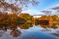 West Brook Morning (Bob90901) Tags: westbrookpond morning longisland newyork autumn fallcolor foliage reflection landscape rpg90901 water sky clouds trees fall fallfoliage symmetry canon 6d canonef24105mmf4lisusm greatriver suffolkcounty pond 2015 october 0816 serene