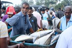 Fish market (good.fisherman) Tags: market fish local life travel street sri lanka