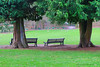 Winter in Cortewalle castle park, Beveren, Belgium (jackfre 2 (sick)) Tags: belgium beveren cortewallecastle domain park castle trees benches