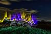 Antmageddon...... (kanaristm) Tags: antmageddon ant bug insect night art light painting lightpainting renningen germany europe kanaris kanarist kanaristm tkanaris tmkanaris copyright2018tmkanaris copyright2018kanaristm nikon d850