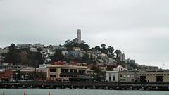 coit (BehindBlueEyes) Tags: california ca sf sanfrancisco urban coittower