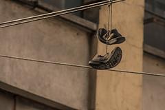 DSC_0426 (kellyte13) Tags: lost things cosasperdidas street blackandwhite amateur project colour