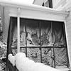 Spring has sprung.....a leak (karma (Karen)) Tags: baltimore maryland snowinspring home screenedinporch snow texture patterns mono bw windows walls squared hww cmwd