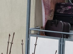"""Eichhörnchen hat sich diesen leichten Stoff auserkoren... (flixx-ak) Tags: flixxakoffenbachammainhessen deutschland germany """"anvormeinemfenster"""" eichhörnchen clip squirrel 2018 mvi2355"""