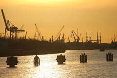 Norderelbe (Elbmaedchen) Tags: hamburgerhafen portofhamburg sonnenlicht gegenlicht backlight elbe norderelbe hamburg hafenkräne industrie