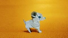 Chihuahua (guangxu233) Tags: origami origamiart paperart paper art paperfolding dog chihuahua 折纸 手作り 折り紙作品 折り紙 hiroakikobayashi