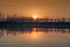 Sunset on the Po river (Olmux82) Tags: po sunset tramonto fiume river sun tree nikon italia water red