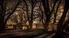 Summer Shadows (emiliopasqualephotography) Tags: garrisonnv nevada shadows trees ruraldecay cabins shacks fear