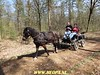 """2018-04-18              Rolde-Sleen        45 Km  (91) • <a style=""""font-size:0.8em;"""" href=""""http://www.flickr.com/photos/118469228@N03/27717574418/"""" target=""""_blank"""">View on Flickr</a>"""