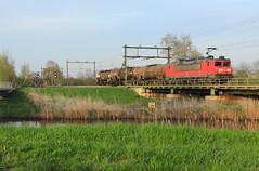 DB Cargo 1611 @ Zwolle (Sicco Dierdorp) Tags: db dbc cargo serie1600 unitcargo keteltrein ketelwagen onnen kijfhoek herfte brug meppel zwolle