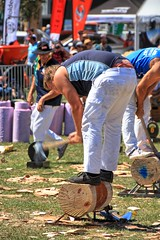 Woodchopper. (Ian Ramsay Photographics) Tags: 2018camdenshow camdencamden newsouthwales australia highly sharpened axe air seconds slices solid timber woodchips