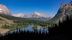 Cathedral Mountain, Canadian Rockies (niallfritz) Tags: canada yoho glacier britishcolumbia trees lake mountain ngc npc