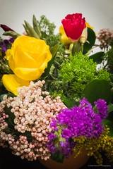 Fresh Bouquet (Matt Barlow Photography) Tags: rose flower green pink yellow purple fresh bouquet spring flowers