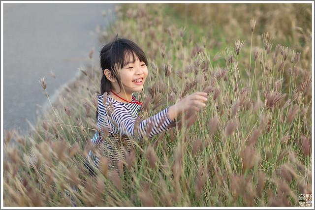 3月台南 親子寫真可以這樣拍 木棉花 蜀葵 小麥 一次讓你拍個夠 (28)