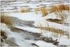 Sable, neige, oyats, Dunes, De Banjaard, Kamperland, Noord-Beveland, Zeelande, Nederland (claude lina) Tags: claudelina nederland hollande paysbas zeelande zeeland merdunord noordzee plage dune beach debanjaard kamperland noordbeveland oyat