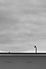 Berlin, Barther Straße - Dach (tom-schulz) Tags: eosm3 efs181353556is rawtherapee haldclut monochrom bw sw berlin thomasschulz haus dach vögel himmel