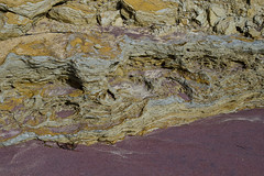 Clay Beach Sculpture (brucetopher) Tags: beach colorful colors sand sandpainting clay gold golden mud geology earth earthy natural nature painted purple cliff erosion etched etching texture gouged carve carved abstract foundart