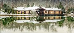 DSC_2513 (Ferenc Ipolyi) Tags: hungary dorog lógató nature winter snow lake landscape tó part house ház nikon d5300 green water