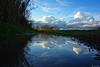 L' Agnesina Vulci (Bruno Tardioli) Tags: riflessi specchio lago landscape paesaggio nubi
