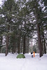 Sante River Winter Camping, February 2018-20 (Nathan Invincible) Tags: camping winter wintercamping subzerowindchill snow snowshoeing snowshoes backcountry sante santeriver pauls paulsfalls houghton houghtoncounty michigan michigansupperpeninsula michiganskeweenawpeninsula keweenaw keweenawpeninsula mi up