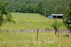 Rural View (Midnight Believer) Tags: rural field vista scenic meadow barn caldwellcounty kentucky bluegrassstate