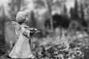 the Guardian Angel (laagwater) Tags: sonya7 konicahexanonar40mmf18 angel graveyard begraafplaats lelystad zw bw monochrome