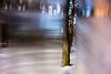 20180304-143 (sulamith.sallmann) Tags: landschaft pflanzen analogeffekt baum blur botanik bäume effect effects effekt filter folie folientechnik forest landscape natur nature pflanze plants tree trees unscharf wald sulamithsallmann