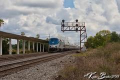 Amtrak 91 at South Lakeland. (K Beeler Rail Photography) Tags: csx lakelandfl searchlightsignals exacl amtrak silverstar amtrak91 southlakeland