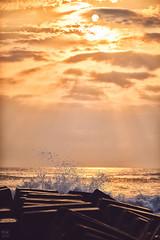 金黃浪濤 (M.K. Design) Tags: taiwan yilan nature landscape seascape scenery travel life nikon d800e sunrise rock ocean sea golden nationalpark family elephant tele bokeh ultrawide afs1424mm28g 105mmf14e hdr 台灣 宜蘭 基隆 瑞芳 永鎮海濱公園 日出 自然 風景 象鼻岩 陽光 火燒雲 岩石 尼康 高動態範圍 海洋 海灘 浪 東北角 海岸 金黃 公園 旅行 生活 家庭 親子 淺景深 壓縮 散景 超廣角