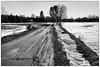 Muddy road (Jerzy Durczak) Tags: road mud muddy