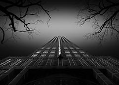 High Above The Trees (TS446Photo) Tags: architecture mono monochrome monomonday travel building skyscraper hunt trees artist fineart