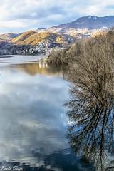 Acqua e riflessi - Water and reflections (Pablos55) Tags: lago lake riflessi reflections albero tree paese village panorama landscape monti mountains