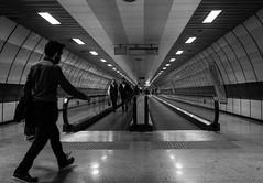 the lead in / vanishing point (Özgür Gürgey) Tags: 2017 35mm bw d750 nikon samyang taksim architecture candid lines station street subway vanishingpoint walkway istanbul turkey