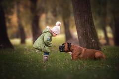 ... (Tamás Szarka) Tags: dog pet animal puppy boxer child kid children