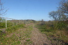 Old railway viaduct over Main St Catcliffe, Sheffield  (former SDR route)   April 2018 (dave_attrill) Tags: catcliffe sheffield railway line disused trackbed remains goods sdr bridge viaduct mainst ballast april 2018 sheffielddistrictrailway southyorkshire