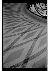 P61-2018-038 (lianefinch) Tags: argentique argentic analogique analog monochrome blackandwhite blackwhite bw noirblanc noiretblanc nb graphic graphique minimalism minimalisme sol floor architecture petit palais mosaique mosaic paris
