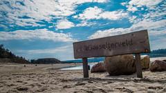 Gasselte Beach (Lars Blaauw) Tags: aaenhunze beach cloudporn drenthe gasselte gasselterveld hemelriekje mooidrenthe staatsbosbeheer staatsbossen strand voorjaar wolken zwemplas