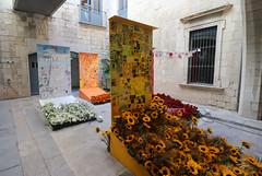 Temps de flors_0258 (Joanbrebo) Tags: girona catalunya españa es tempsdeflors tempsdeflors2017 canoneos80d eosd efs1018mmf4556isstm autofocus