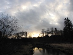Wild March Sunset IMG_2079 (Shutterbuglette) Tags: