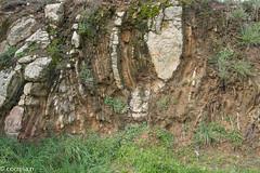 Migmatitos (Vila do Conde)_-13 (correia.nuno1) Tags: geologia geology metatexitos migmatitos