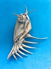 Venus Comb Murex (日輪富 Philogami) Tags: origami philogami satoshi kamiya venus comb murex paper corky art fold folding animal sea sealife wetfolding