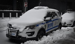 New York Police Department FPIU (nyfrp) Tags: new york police department nypd van chevy chevrolet blue line thin bluelineofny nyc times square timessquare ny manhattan pd car impala port authority wtc world trade center freedom tower downtown fpiu ford