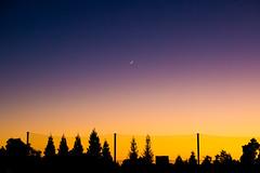 Piedmont (Thomas Hawk) Tags: america california eastbay piedmont piedmontfootball piedmonthigh piedmonthighschool usa unitedstates unitedstatesofamerica witterfield sunset us fav10 fav25 fav50 fav100
