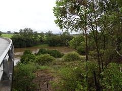 Manning River (2) (damoN475photos) Tags: manning river killawarra 2018